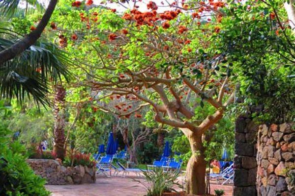 Негомбо. Парк расположился на курорте Лакко-Амено