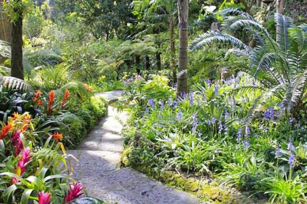 Ботанический сад Ла Мортелла. Рядом с горой Монте Заро
