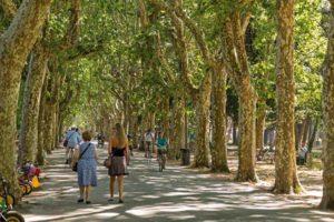 Городской парк Пинете-ди-Понтене в Виареджо