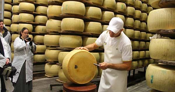 Сыр Пармезан в Парме
